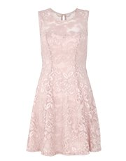 Quiz sweetheart lace skater dress