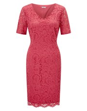 Precis Petite Jessie lace dress