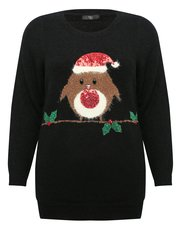 Plus Robin Christmas jumper