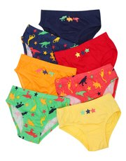 Dinosaur briefs seven pack