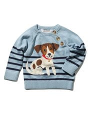 Dog knitted jumper