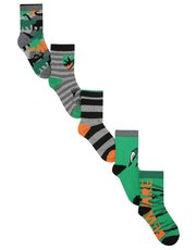 Dinosaur stripe socks five pack