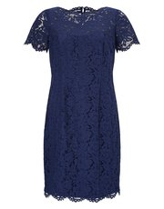 Precis Petite lace dress