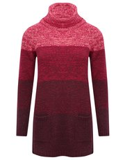 Ombre roll neck tunic jumper