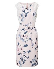 Precis Petite lace and print dress
