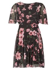 Izabel floral chiffon tea dress