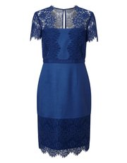 Precis Petite shimmer lace dress