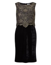 Precis Petite lace and velvet dress
