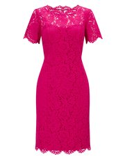 Precis Petite lace shift dress