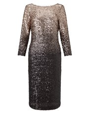 Precis Petite ombre sequin dress