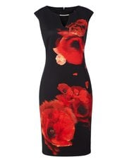 Roman Originals placement print scuba dress
