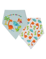 Dinosaur print dribble bibs two pack