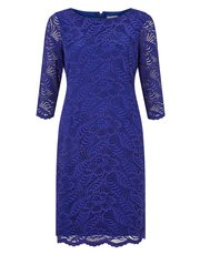 Precis Petite two tone lace dress