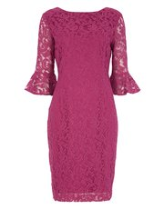 Roman Originals frill sleeve lace shift dress
