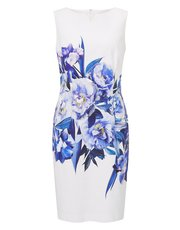 Precis Petite placement print dress