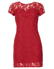 Izabel leaf lace overlay dress