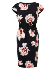 Precis Petite desert rose print dress