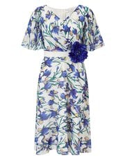Jacques Vert Iris printed dress