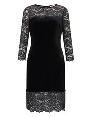 Precis Petite velvet and lace dress