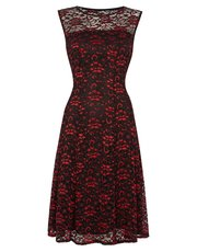 Roman Originals shimmer lace skater dress