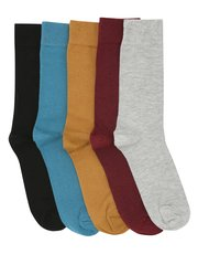 Coloured sock five pair pack