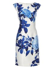 Roman Originals floral print placement dress