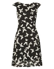 Izabel butterfly print tea dress