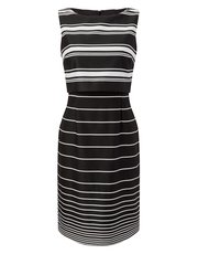 Precis Petite Jojo stripe dress