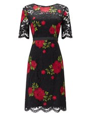Precis Petite embroidered dress