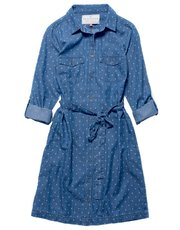 Brakeburn chambray shirt dress