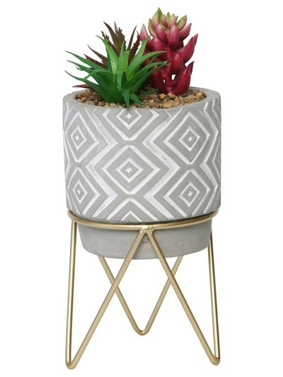 Small succulent planter with stand