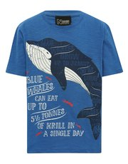 Natural History Museum blue whale print t-shirt