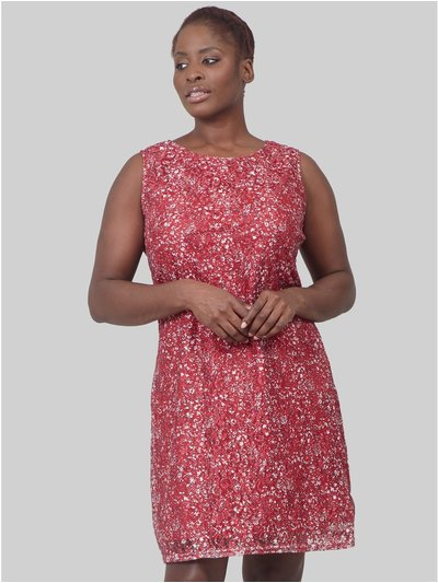 Izabel Curve ditsy floral lace dress
