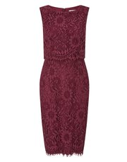 Precis Petite lace double layer shift dress