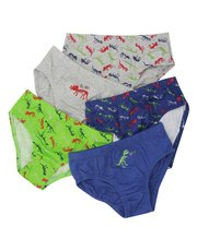Dinosaur briefs five pack