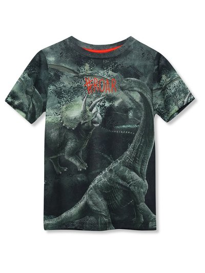 Slogan dinosaur t-shirt (9mths-5yrs)