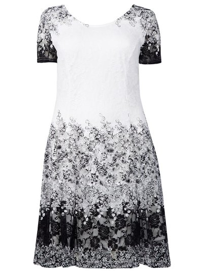Izabel Curve floral and lace skater dress