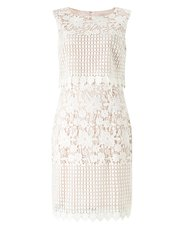 Precis Abra lace dress