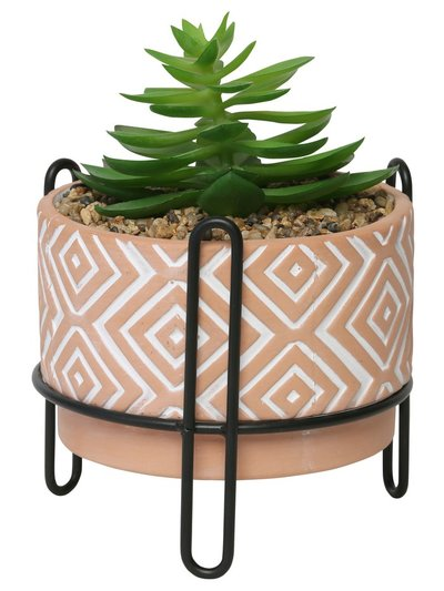 Large succulent planter with stand