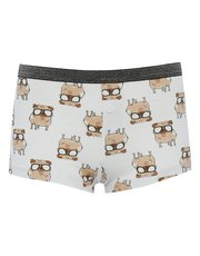 Teens' pug boxer briefs