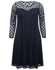 Plus spot mesh fit and flare dress