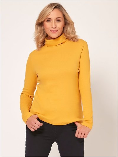 Spirit roll neck top