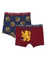 Harry Potter trunks two pack