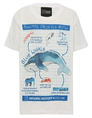 Natural History Museum blue whale profile print t-shirt