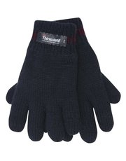 Blue thinsulate gloves