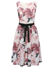Floral stripe print fit and flare dress