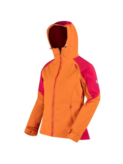 Desoto III Hooded Softshell Walking Jacket