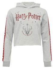 Teens' Harry Potter hoody