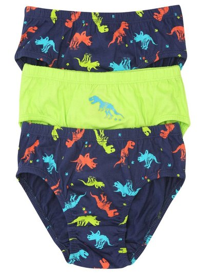 Dinosaur briefs three pack (2 - 10 yrs)