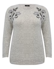 Plus floral embroidered jumper
